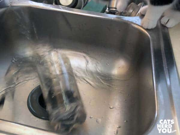 glass spills in sink