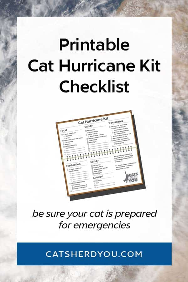A Hurricane Kit Checklist for your Cat. Be sure you have all the food, medication, safety items, and documents you need.