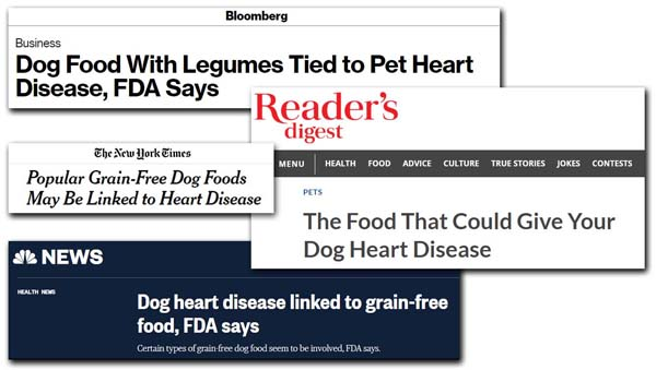 articles about concerns that grain-free dog food may cause heart ailments in dogs