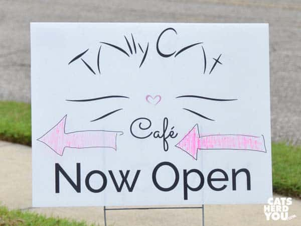 Tally Cat Cafe Now Open Sign